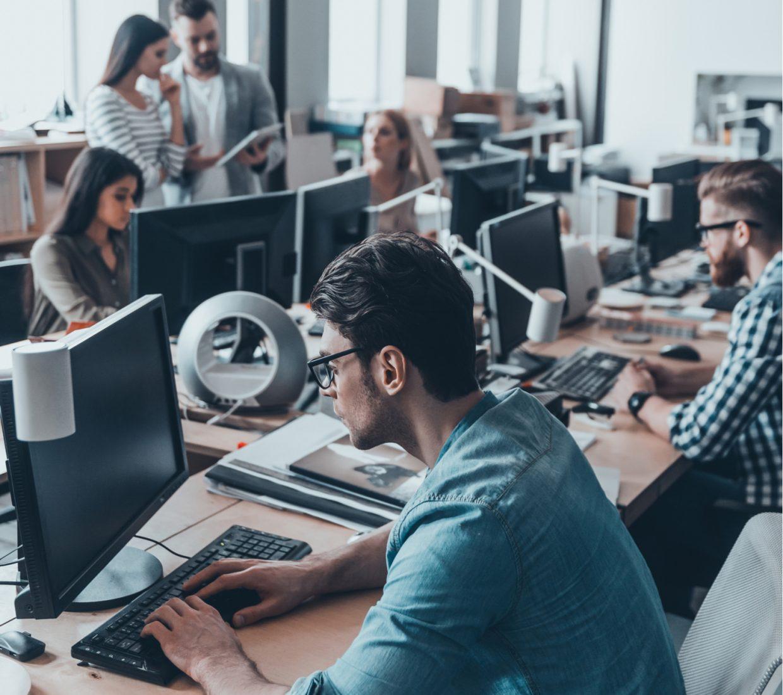 computer developers working